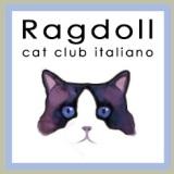 Ragdoll Club Italia